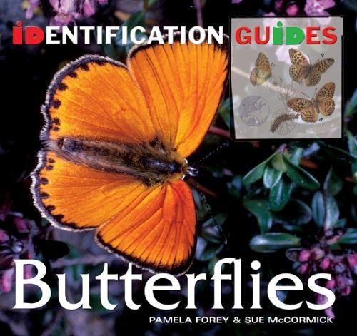 Butterflies: Identification Guide by Pamela Forey