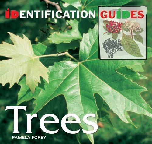 Trees: Identification Guide by Pamela Forey