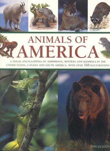 Animals of America By Tom Jackson
