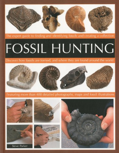 Fossil Hunting By Steve Parker