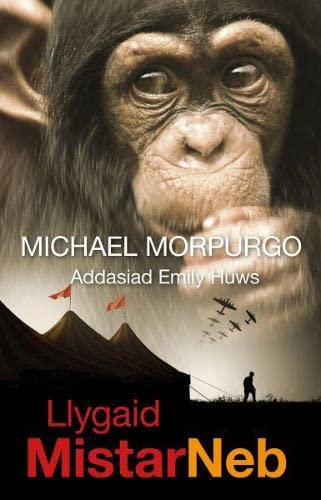 Llygaid Mistar Neb By Michael Morpurgo