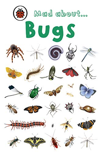 Mad About Bugs By Ladybird