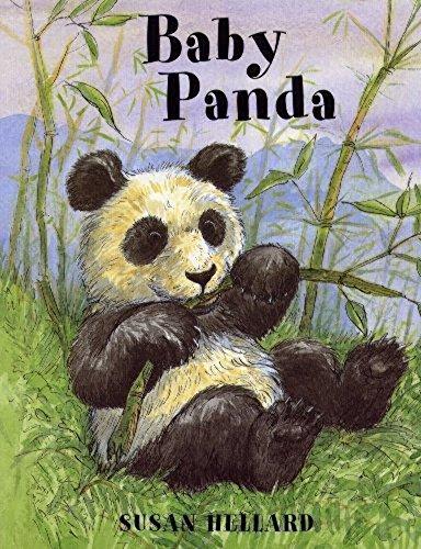 Baby Panda By Susan Hellard
