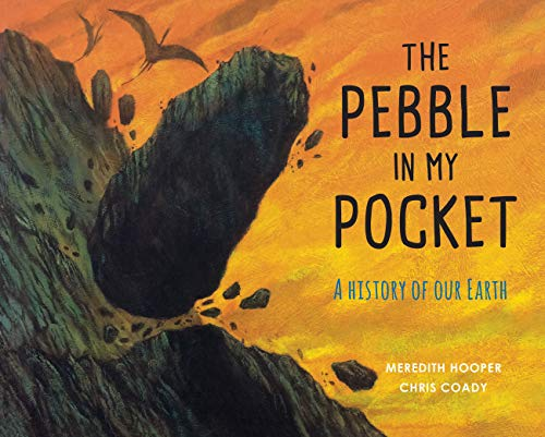 The Pebble in My Pocket By Meredith Hooper