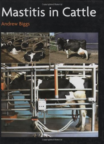 Mastitis In Cattle By Andrew Biggs