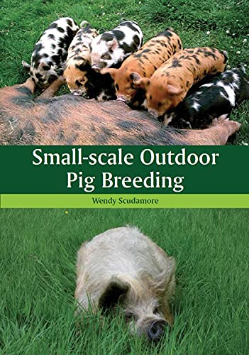 Small-scale Outdoor Pig Breeding By Wendy Scudamore