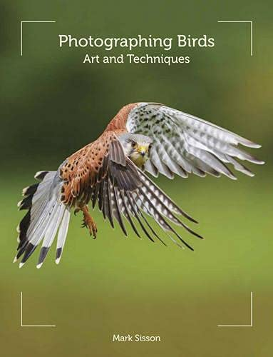 Photographing Birds: Art and Techniques By Mark Sisson