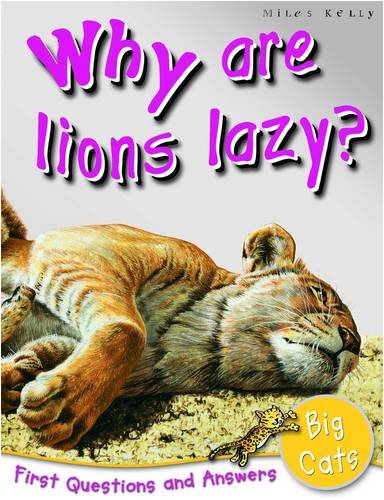 1st Questions and Answers Big Cats By Belinda Gallagher