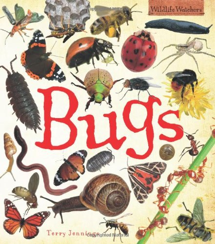 Bugs (Wildlife Watchers) By Terry Jennings