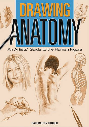 Drawing Anatomy By Barrington Barber