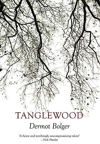 Tanglewood By Dermot Bolger