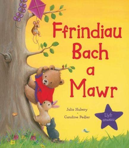 Ffrindiau Bach a Mawr By Julia Hubery