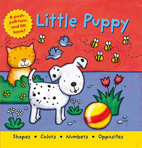 Little Puppy By Igloo Books Ltd