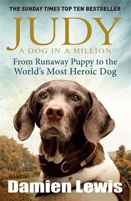 Judy: A Dog in a Million: From Runaway Puppy to the World's Most Heroic Dog by Damien Lewis