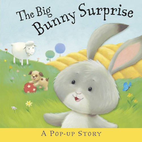 The Big Bunny Surprise By Liza Miller
