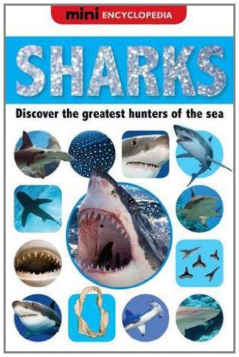 Mini Encyclopedias Sharks By Sarah Creese