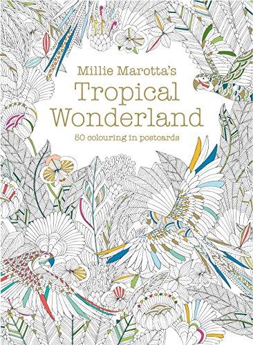 Millie Marotta's Tropical Wonderland Postcard Box By Millie Marotta