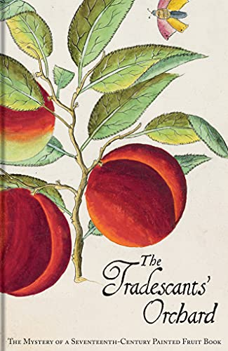 The Tradescants' Orchard: The Mystery of a Seventeenth-Century Painted Fruit Book By Barrie Junniper