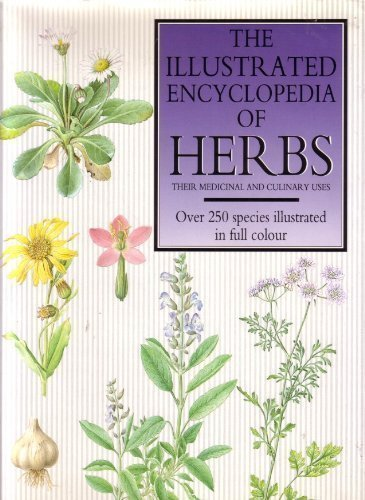 The Illustrated Encyclopedia of Herbs: Their Medicinal and Culinary Uses by Jiri Stodola