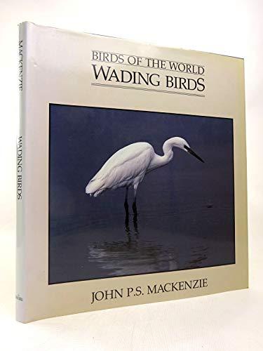 Wading Birds By John P.S. Mackenzie