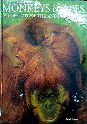 Apes and Monkeys By Paul Sterry