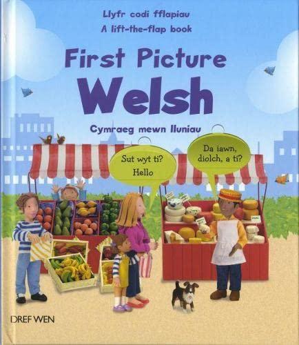 First Picture Welsh/Cymraeg Mewn Lluniau By Felicity Brooks