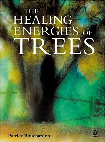 The Healing Energy Of Trees By Patrice Bouchardon