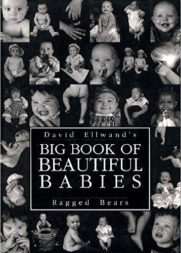 Big Book of Beautiful Babies by David Ellwand