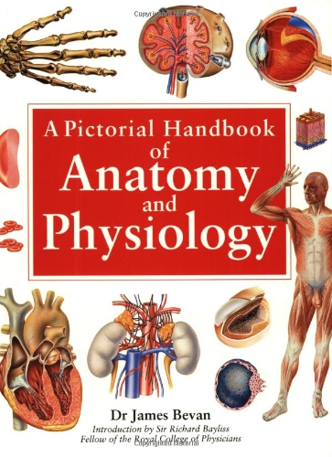 Handbook of Anatomy and Physiology By James Bevan