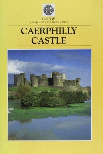 Caerphilly Castle by D.F. Renn