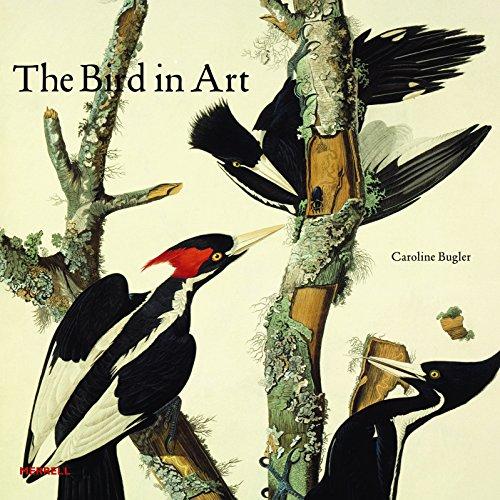 Bird in Art By Caroline Bugler
