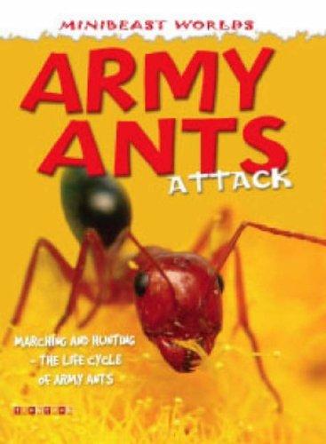Mb Army Ants Attack Mini Beasts By Clint Twist