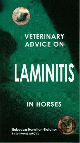 Veterinary Advice on Laminitis in Horses By Rebecca Hamilton-Fletcher
