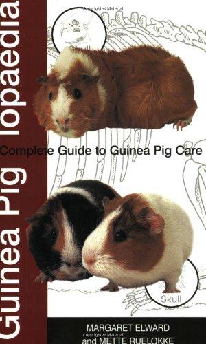 Guinea Piglopaedia By Margaret Elward
