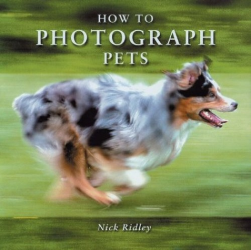 How to Photograph Pets By Nick Ridley