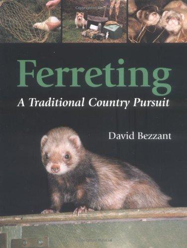 Ferreting By David Bezzant