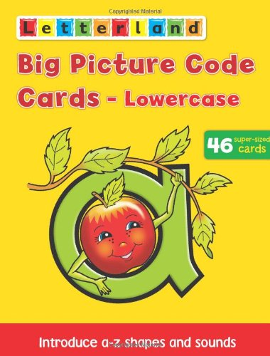 Big Picture Code Cards By Lyn Wendon