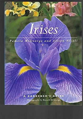 Irises By Pamela McGeorge