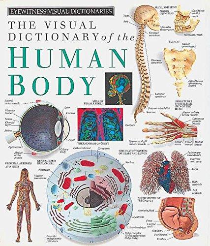 The Human Body von DK