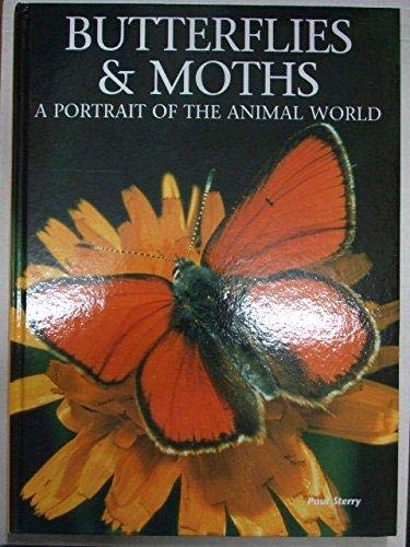Butterflies and Moths (Portrait of the Animal World) By Paul Sterry