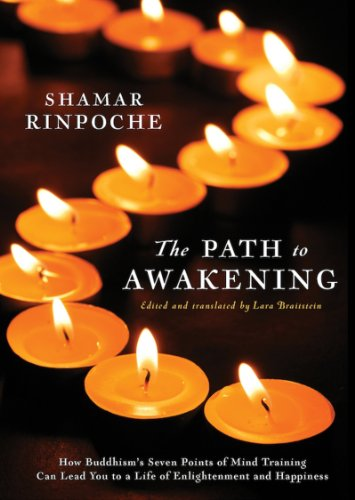 The Path To Awakening By Shamar Rinpoche