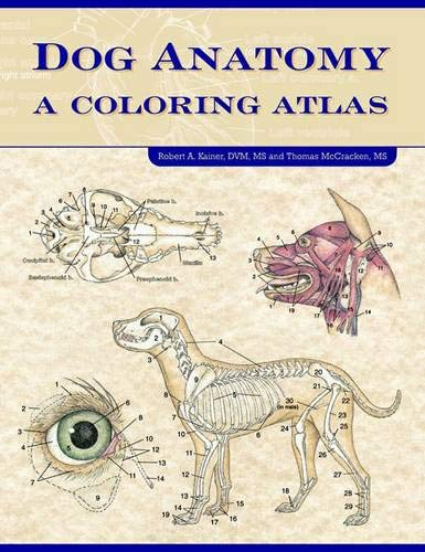 Dog Anatomy: A Coloring Atlas: A Colouring Atlas By Robert A. Kainer