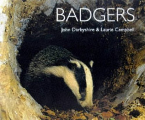 Badgers By Laurie Campbell