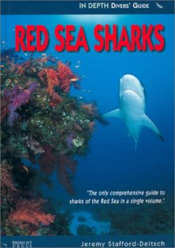 Red Sea Sharks By Jeremy Stafford-Deitsch
