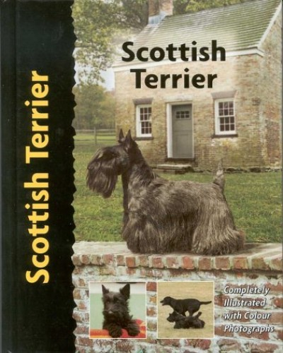 Scottish Terrier By Muriel P. Lee