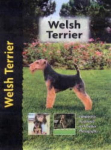 Welsh Terrier By Hugh Owen