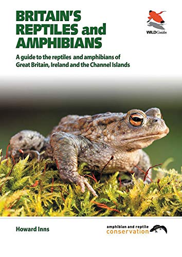 Britain's Reptiles and Amphibians (WILDGuides) By Howard Inns