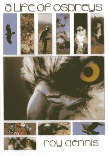 A Life of Ospreys By Roy Dennis