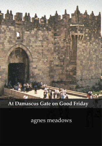 At Damascus Gate on Good Friday By Agnes Meadows