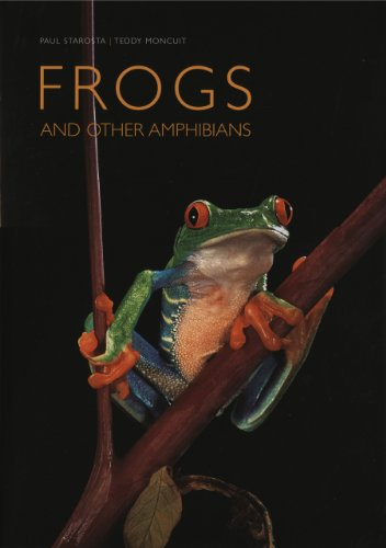 Frogs and Other Amphibians By Paul Starosta